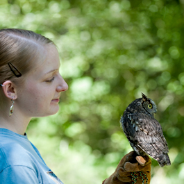 Wildlife management student holding an owl
